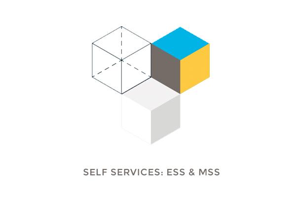 Drei dreidimesionale Würfel fürs Projekt ESS und MSS